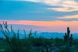 10355 Desert Vista Drive - Photo 6