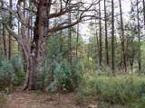 1J Verde Glen - Photo 6