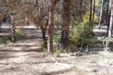 265 Columbine Road - Photo 11