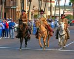 12625 Saguaro Boulevard - Photo 36