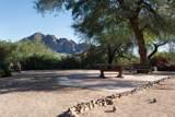 4229 Desert Crest Drive - Photo 6
