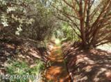 1791 Chavez Ranch Road - Photo 92