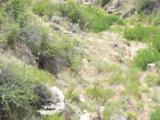 6059 Mesa View Drive - Photo 8