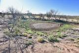8850 Howling Coyote Trail - Photo 14