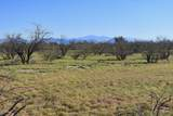 8850 Howling Coyote Trail - Photo 15
