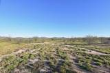 8850 Howling Coyote Trail - Photo 3