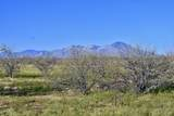 8850 Howling Coyote Trail - Photo 4