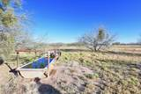 8850 Howling Coyote Trail - Photo 8
