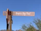14611 Prairie Dog Trail - Photo 4