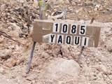 1085 Yaqui Drive - Photo 40