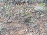 Lot 236 Show Low Pines Unit 3 - Photo 14