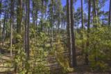 3190 B Tree Tops Trail - Photo 3