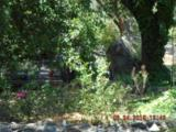 16775 Shrine Drive - Photo 24