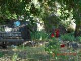 16775 Shrine Drive - Photo 9