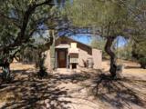 37828 Scopa Trail - Photo 6