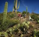 10495 Scopa Trail - Photo 31