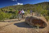 10495 Scopa Trail - Photo 32