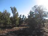 3914 Sunset Ridge Loop - Photo 2