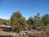 3914 Sunset Ridge Loop - Photo 4