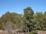 3914 Sunset Ridge Loop - Photo 6