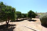 3211 Las Rocas Drive - Photo 2