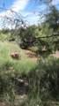 109 River Springs Ranch Unit 3 - Photo 11