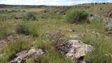 109 River Springs Ranch Unit 3 - Photo 12