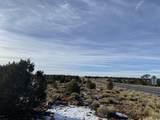 3747 Desert View Trail - Photo 11