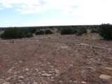 Lot 252 Chevelon Canyon Ranch - Photo 11