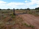 Lot 252 Chevelon Canyon Ranch - Photo 13