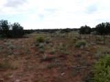 Lot 252 Chevelon Canyon Ranch - Photo 2