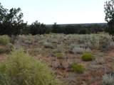 Lot 252 Chevelon Canyon Ranch - Photo 3