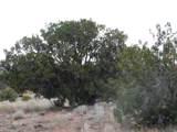 Lot 252 Chevelon Canyon Ranch - Photo 4