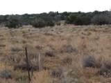 Lot 252 Chevelon Canyon Ranch - Photo 9