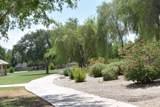 11626 Olive Drive - Photo 28