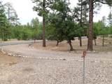 1560 Elk Run Drive - Photo 21