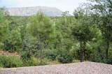 175 Rocking Horse Bend - Photo 8