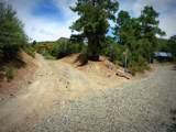 6400 Mayer Bolada Road - Photo 61