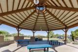 30954 Desert Honeysuckle Drive - Photo 36