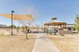 30954 Desert Honeysuckle Drive - Photo 40