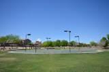 30954 Desert Honeysuckle Drive - Photo 41