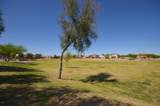 30954 Desert Honeysuckle Drive - Photo 43