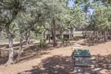 6207 Hidden Pines Loop - Photo 44