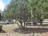 34301 El Capitan Road - Photo 68