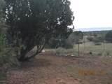 34301 El Capitan Road - Photo 77