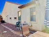36136 Catalan Street - Photo 45
