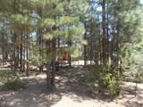 3463 Deer Track Trail - Photo 3