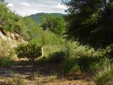 22950 Towers Mountain Road - Photo 8