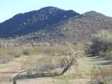 15339 Desert Vista Trail - Photo 10