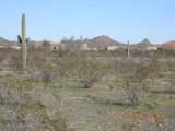 15339 Desert Vista Trail - Photo 11